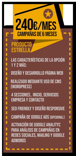 plan página web para marbella y marketing digital de 240€